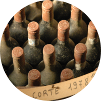 pakete-probierpaket-weinauswahl-weisswein-rotwein-rosewein